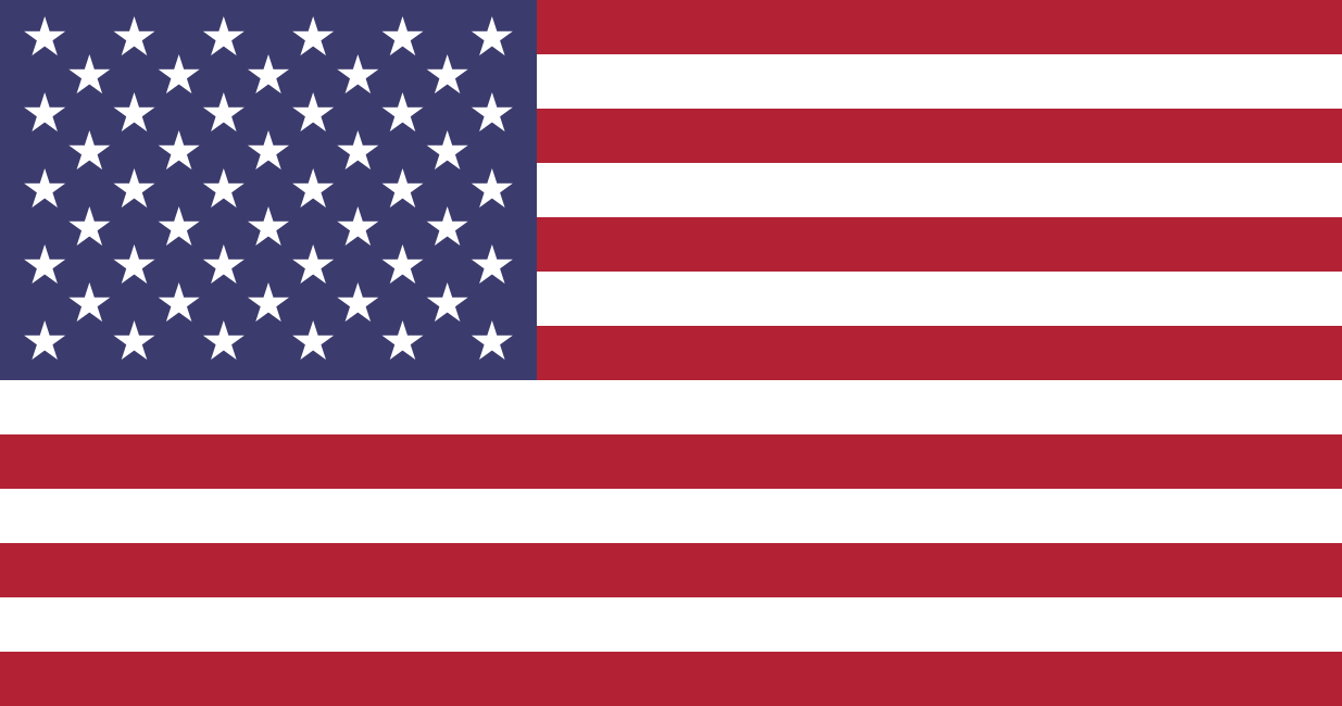 Usa flag big